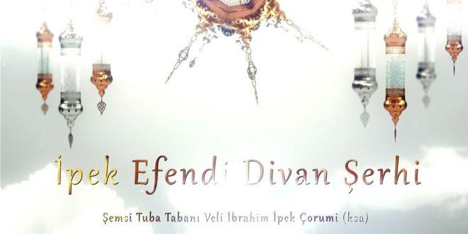 77. Divan Şerhi 19.03.2020